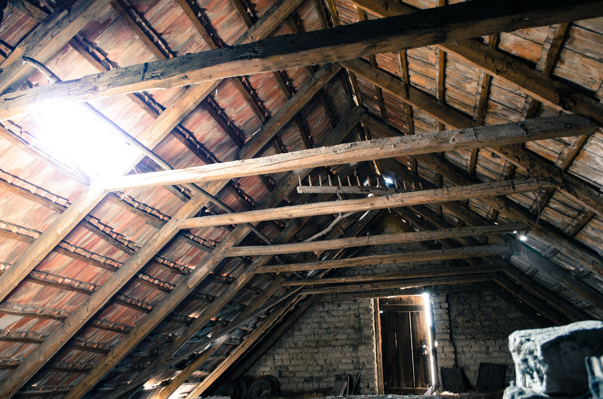 old wooden attic mold removal toronto