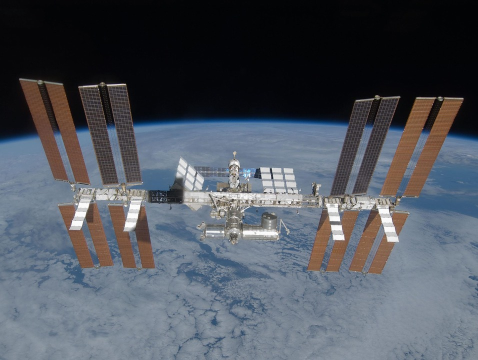 International Space Station - Mold in Space